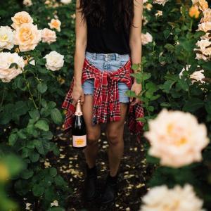 clicquot rose