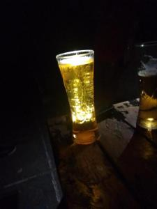 Carlsberg 5% alcohol