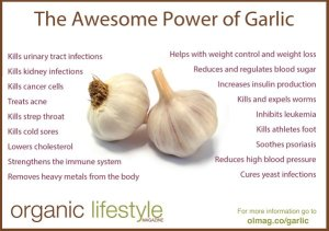 awesome power of garlic