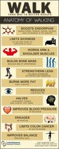 exercise dna tw feb 16