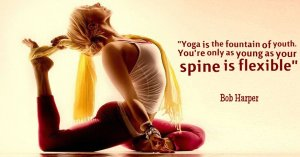 yoga fountain of youth tw feb 16