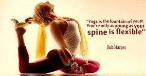 yoga fountain of youth tw feb 16
