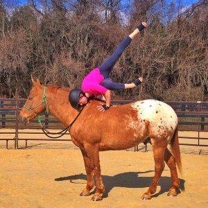 yoga on horseback tw apr 16