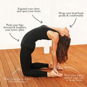 camel yoga tw 19616