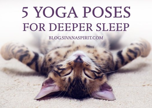 5 poses for sleep tw 4716