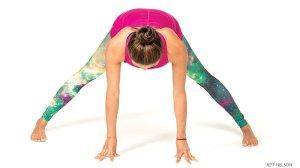 basics yog tw 1716
